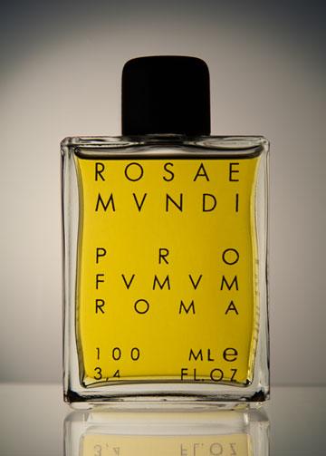 rosae-mundi