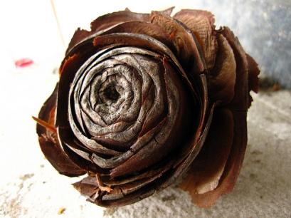 wooden rose