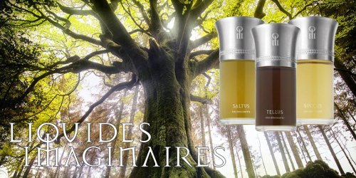 li-trees-s