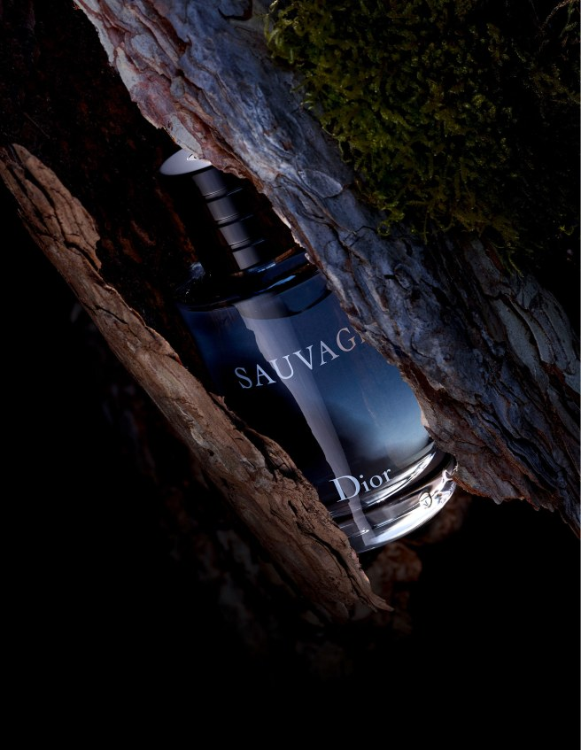 sauvage_fragrance_3grille_02